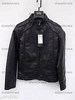 """Куртка мужская кожаная демисезонная """"Alisa"""" LB-1070"""