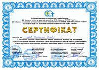 Совместный семинар СЭС и Института  гигиены и медицинской экологии им. А.Н. Марзеева