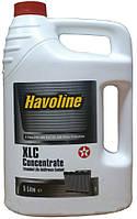 Texaco Havoline XLC Concentrate, 5л.
