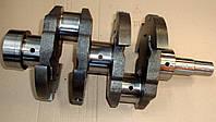 Коленчатый вал (коленвал) на трактор Т-25, Т-16 | Д21-1005007 | Д21-1005011
