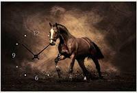 """Картина-часы (40х60 см) """"Черный конь"""""""