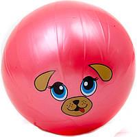 Мяч детский MS 0249 9 дюймов, одностикерный, ПВХ, 75г, 10видов (мордочки животных)