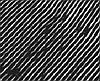 Mapewrap C UNI-AX Покрытие углеволоконное однонаправленное