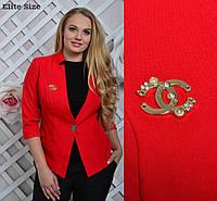 Жакет женский батал шикарный стильный однотонный с нашивкой красный