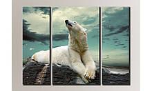 """Модульная картина на холсте """"Белый медведь"""""""