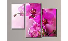 """Модульная картина на холсте """"Розовая орхидея 2"""""""