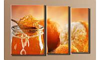 """Модульная картина на холсте """"Апельсиновый джем"""""""