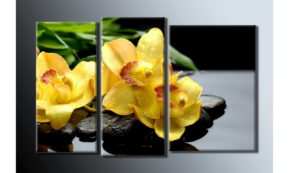 "Модульная картина на холсте ""Желтые орхидеи"""