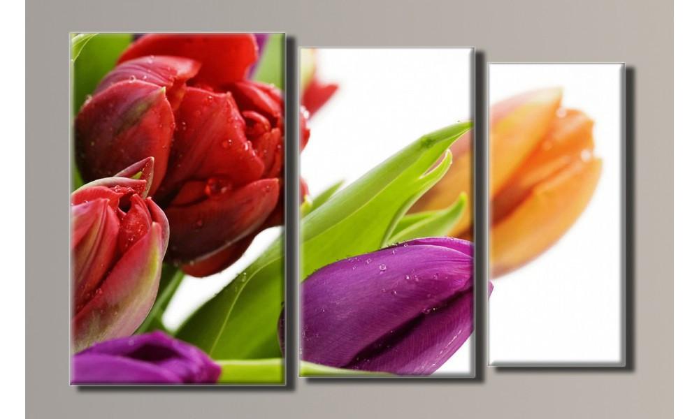 "Модульная картина на холсте ""Тюльпаны 4"""