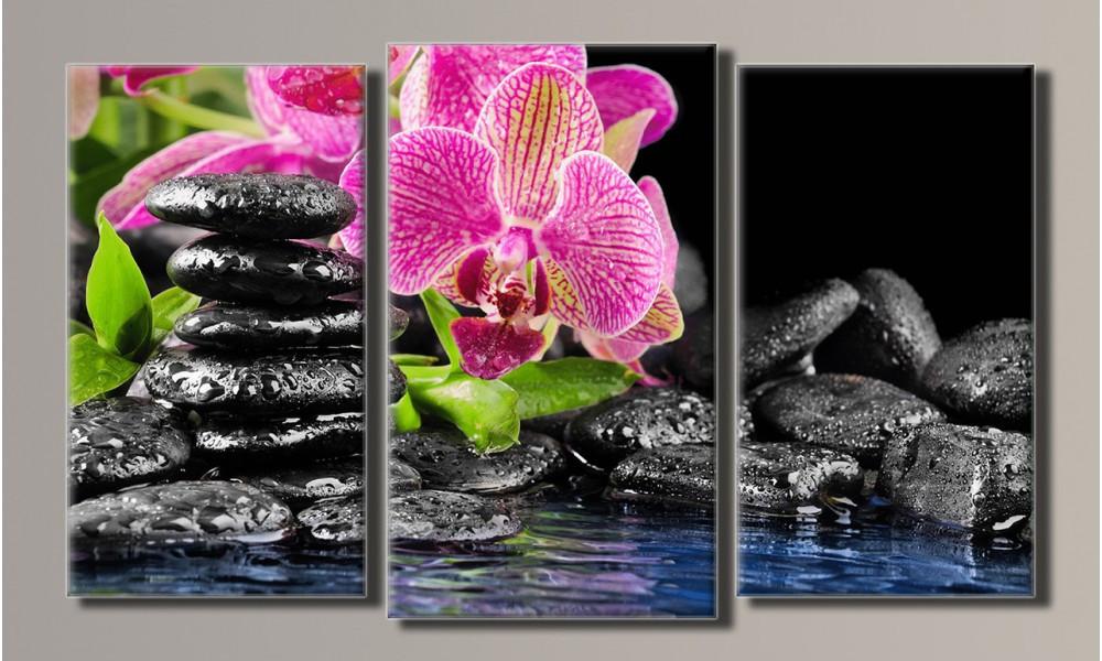 "Модульная картина на холсте ""Орхидея на камнях 2"""
