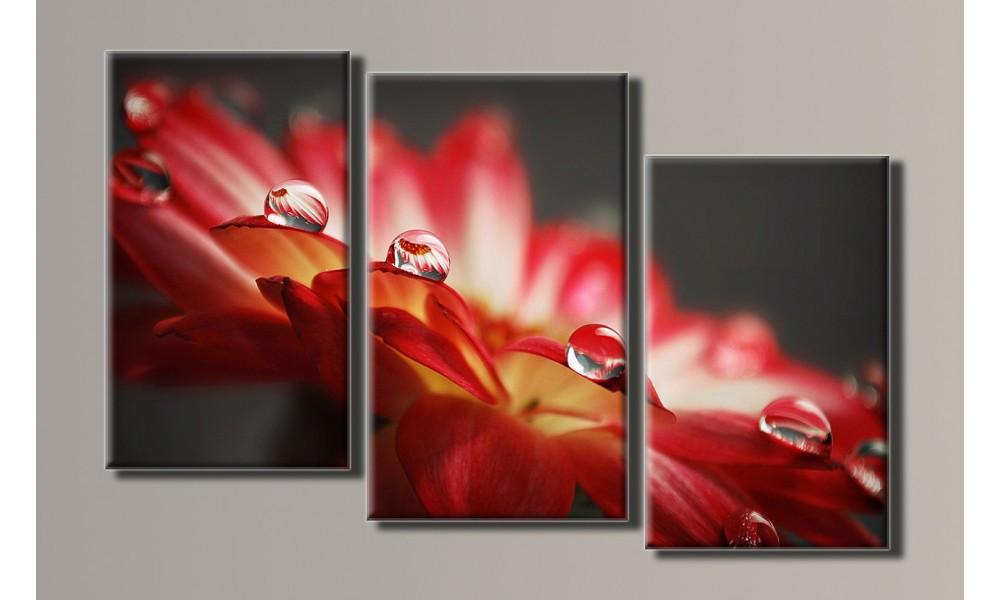 "Модульная картина на холсте ""Капли на цветке"""