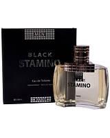 Мужская туалетная вода Stamino Black, 100 мл
