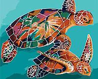 Картина по номерам KH2455 Радужные черепахи (40 х 50 см) Идейка