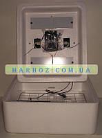 Инкубатор Несушка БИ-1 (БИ-2) автомат, аналоговый на 63 яйца + выход на 12В