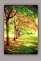 Светящиеся картина Startonight Алея Природа Пейзаж Деревья Печать на Холсте Декор стен Дизайн дома Интерьер