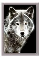 Светящиеся картина Startonight Волк Черно Белые Животные Печать на Холсте Декор стен Дизайн дома Интерьер