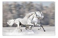 Светящиеся картины Startonight Лошади Печать на Холсте Животные Декор стен Дизайн дома Интерьер