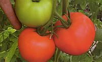 Томат Женарос 1000 семян, фото 1
