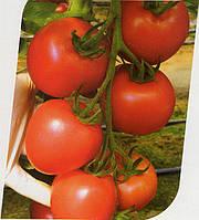 Томат розовый Канна 218 500 семян