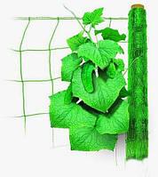 Сетка шпалерная для огурцов и цветов 5м