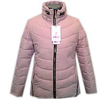 Куртка демисезонная, фото 3