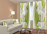 """ФотоШторы """"Пальмовая веточка и орхидеи"""" 2,5м*2,6м (2 половинки по 1,30м), тесьма"""