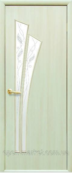Модель Лилия ЭКОШПОН стекло Р межкомнатные двери, Николаев