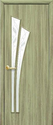 Модель Лилия ЭКОШПОН стекло Р межкомнатные двери, Николаев, фото 2