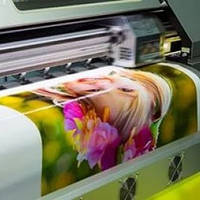 Печать на плёнке самоклеящейся Oracal