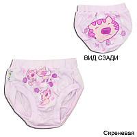 Детские трусы на памперс для девочки *Блумерсы-1*