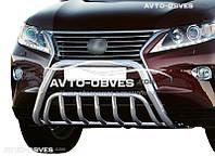 Защитная дуга для Lexus RX