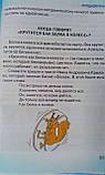 Велика книга відповідей почемучкам (рос. мова) 68573 Веско Україна, фото 7