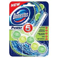 Подвесные таблетки для унитаза Domestos Lime 55g.