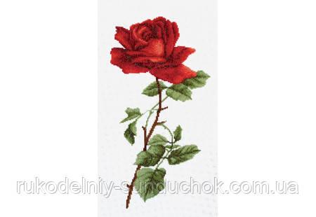 "Набор для вышивания крестом ТМ ""Повітруля"" Алая роза  П6 008"