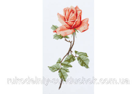"Набор для вышивания крестом ТМ ""Повітруля"" Чайная роза  П6 019"