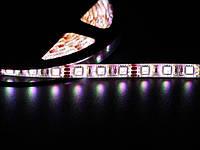 Лента Светодиодная в силиконе 3528 RGB 5 метров катушка