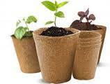Все для выращивания рассады