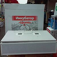 Инкубатор для яиц ципа-харьков, механический переворот, цифровой регулятор, закладка 100 яиц