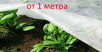 Агроволокно белое (спанбонд) 17 г/м кв. для защиты ягод, овощей, фруктов, деревьев и кустов