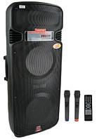 Мощная акустика на аккумуляторе A65S - 350W (2 микрофона/FM/Bluetooth)