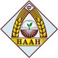 Подсолнечник НИИ им. Юрьева