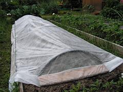 Белое агроволокно, агроткань (спанбонд) 30 г/м кв., фото 3