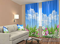 """ФотоШторы """"Полевые цветы"""" 2,5м*2,9м (2 полотна по 1,45м), тесьма"""