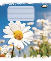 Тетрадь 12 листов клетка , Летний цветок, белоснежная бумага Голд Бриск