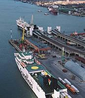 Услуги по организации контейнерных перевозок  морским транспортом