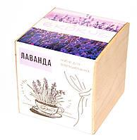 Набор для выращивания Экокуб Лаванда