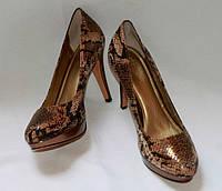 Туфли женские кожаные Circa Joan&David  цвет золотой питон