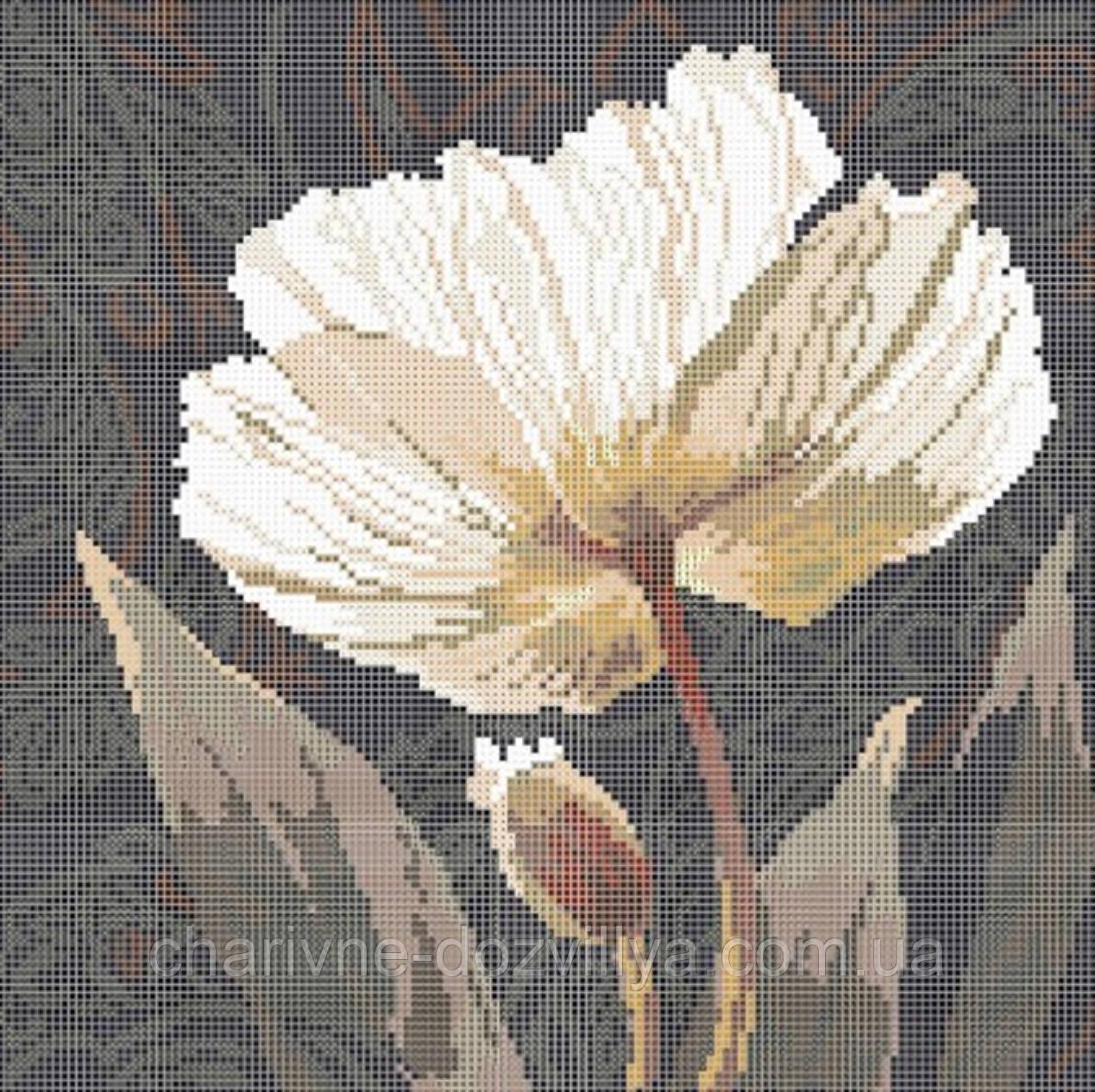 Белый пион схемы вышивки