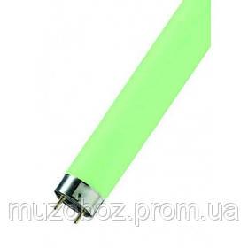 Osram Color green люминесцентная лампа (L-120 см)