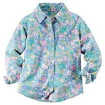 Рубашка девочка Carters (253g271)